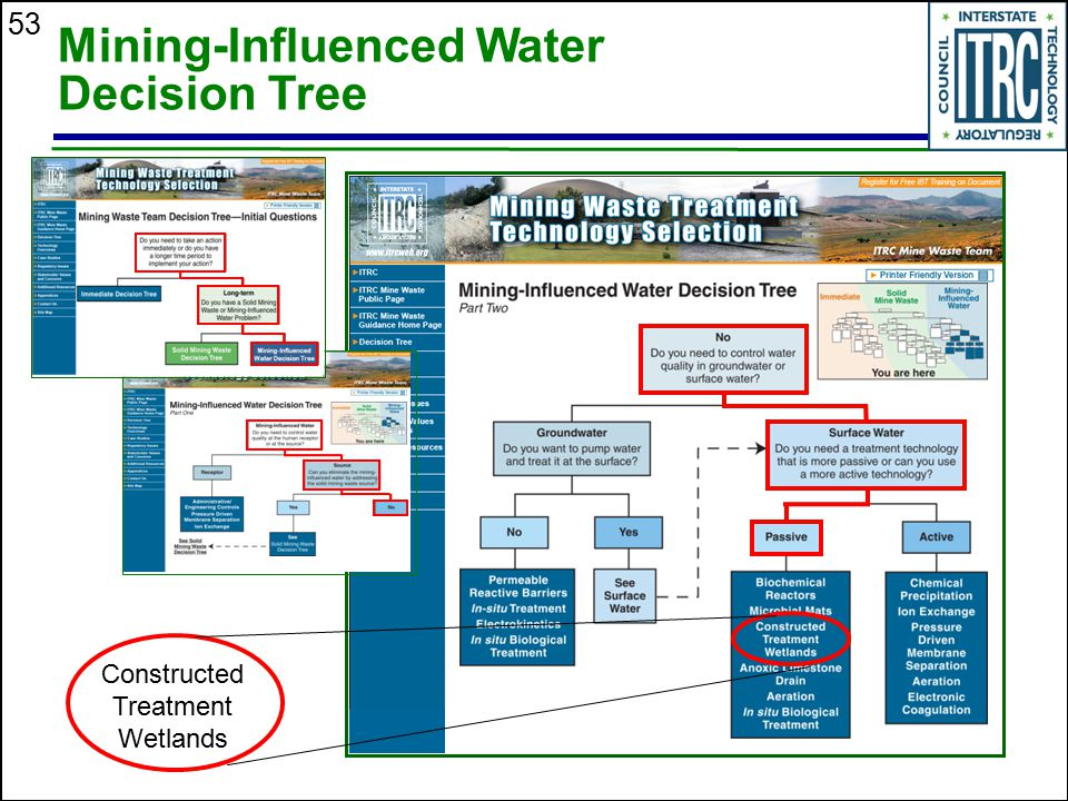 53 Mining-Influenced Water Decision Tree Constructed Treatment Wetlands