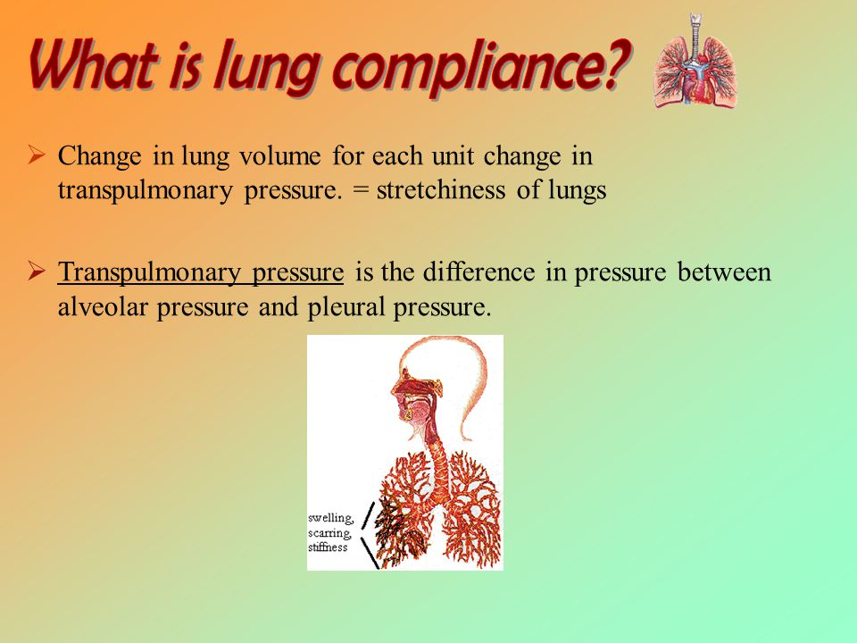  lung compliance Change in lung volume for each unit change in transpulmonary pressure.