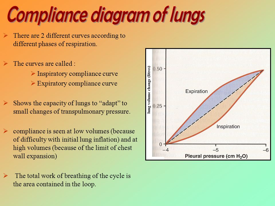 Compliance of lungs occurs due to elastic forces.A.Elastic forces of the lung tissue itself B.