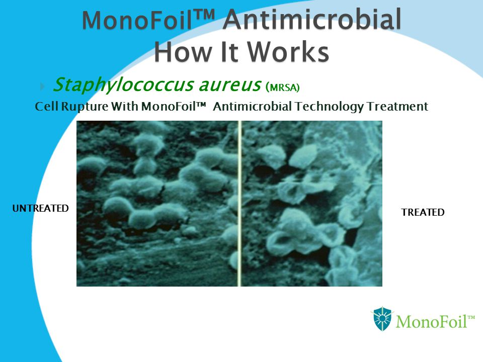 MonoFoil ™ Antimicrobial How It Works  Staphylococcus aureus ( MRSA) Cell Rupture With MonoFoil™ Antimicrobial Technology Treatment UNTREATED TREATED