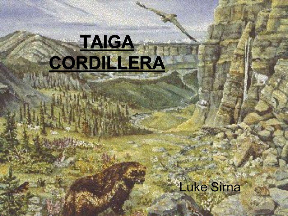 Luke Sirna