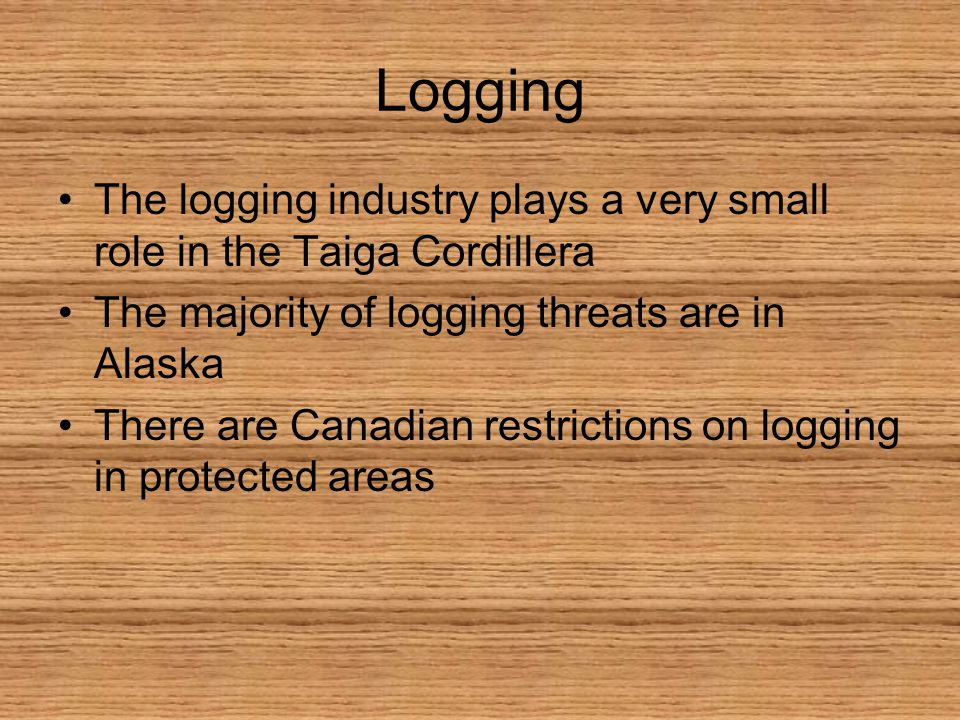 Logging The logging industry plays a very small role in the Taiga Cordillera The majority of logging threats are in Alaska There are Canadian restrictions on logging in protected areas