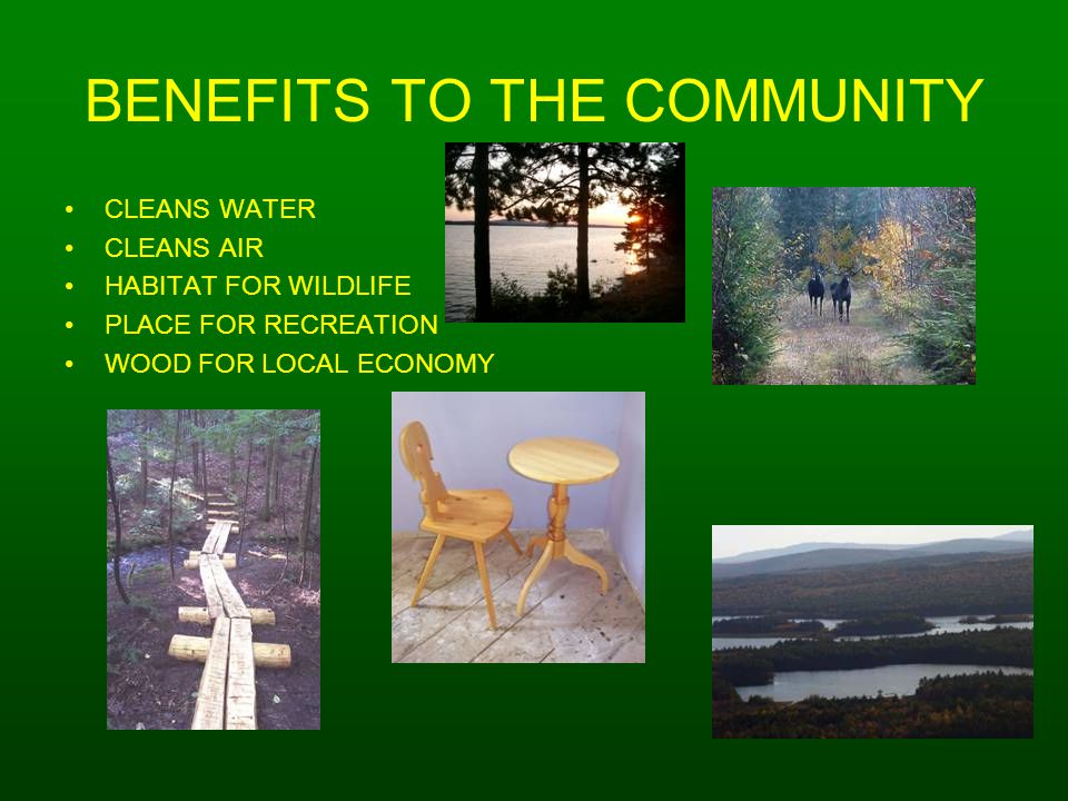BENEFITS TO THE COMMUNITY CLEANS WATER CLEANS AIR HABITAT FOR WILDLIFE PLACE FOR RECREATION WOOD FOR LOCAL ECONOMY