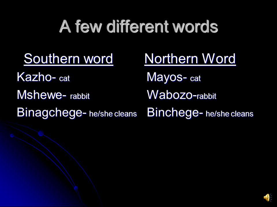 A few different words Southern word Northern Word Southern word Northern Word Kazho- cat Mayos- cat Mshewe- rabbit Wabozo- rabbit Binagchege- he/she cleans Binchege- he/she cleans