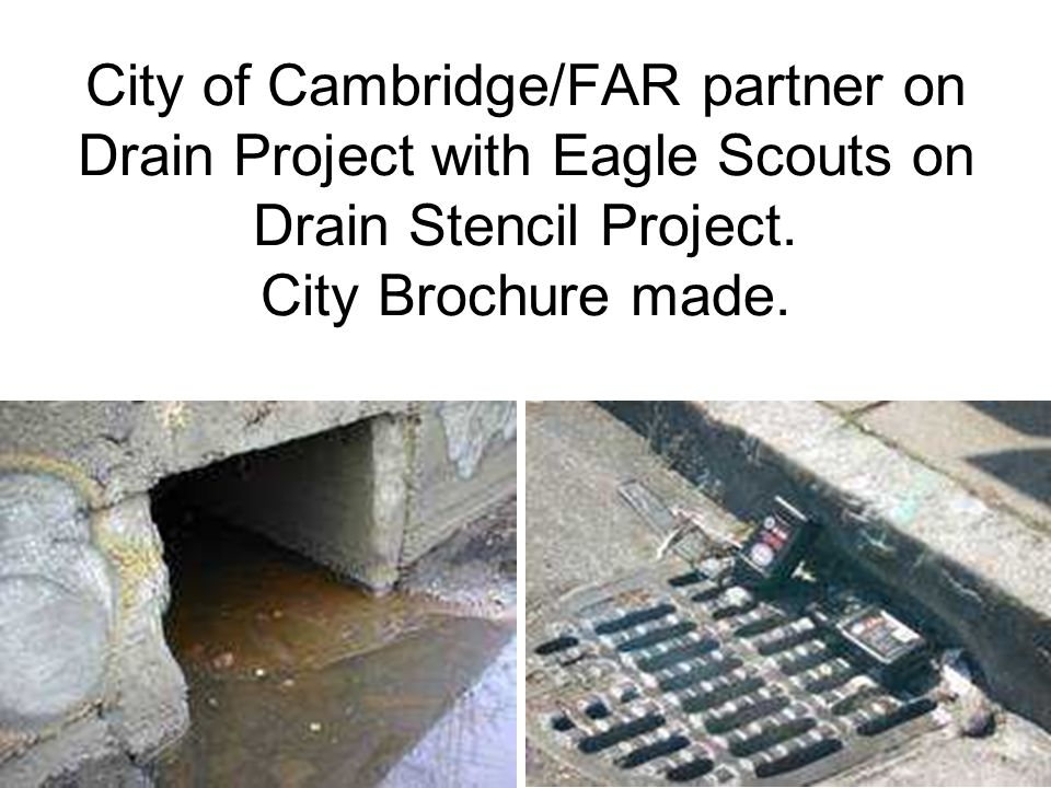 City of Cambridge/FAR partner on Drain Project with Eagle Scouts on Drain Stencil Project.