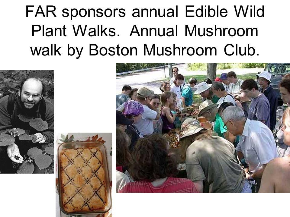 FAR sponsors annual Edible Wild Plant Walks. Annual Mushroom walk by Boston Mushroom Club.