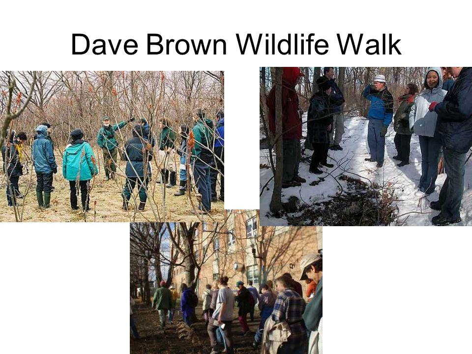 Dave Brown Wildlife Walk