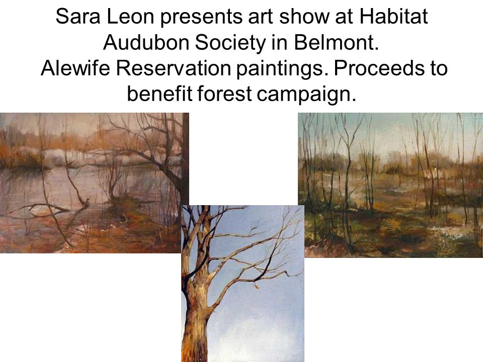 Sara Leon presents art show at Habitat Audubon Society in Belmont. Alewife Reservation paintings. Proceeds to benefit forest campaign.