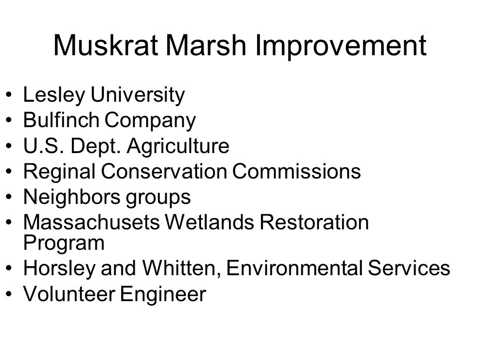 Muskrat Marsh Improvement Lesley University Bulfinch Company U.S. Dept. Agriculture Reginal Conservation Commissions Neighbors groups Massachusets Wet