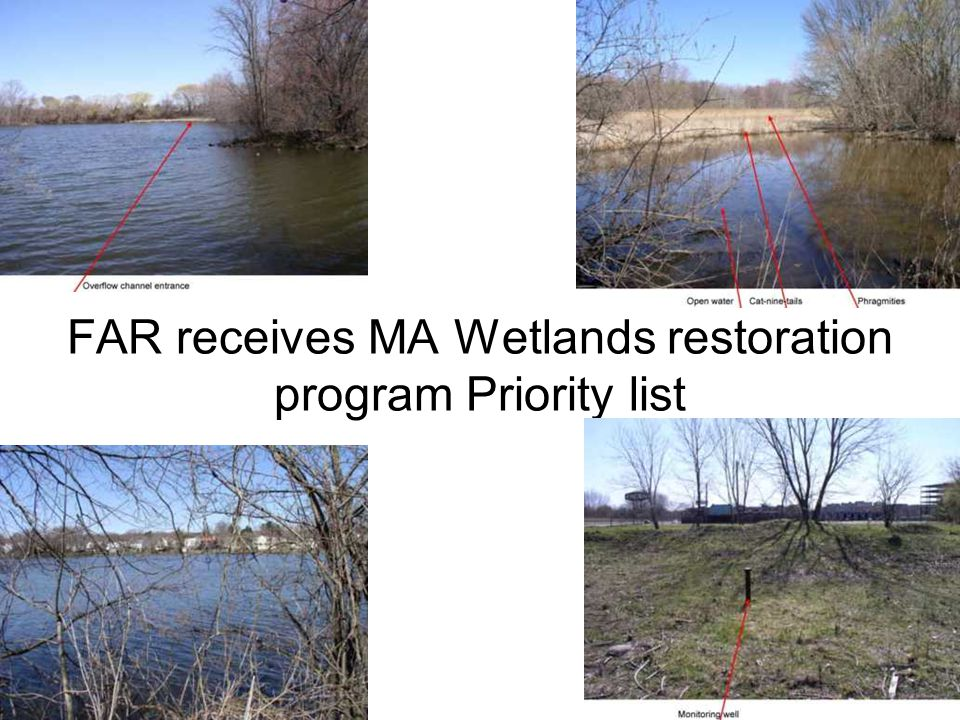FAR receives MA Wetlands restoration program Priority list