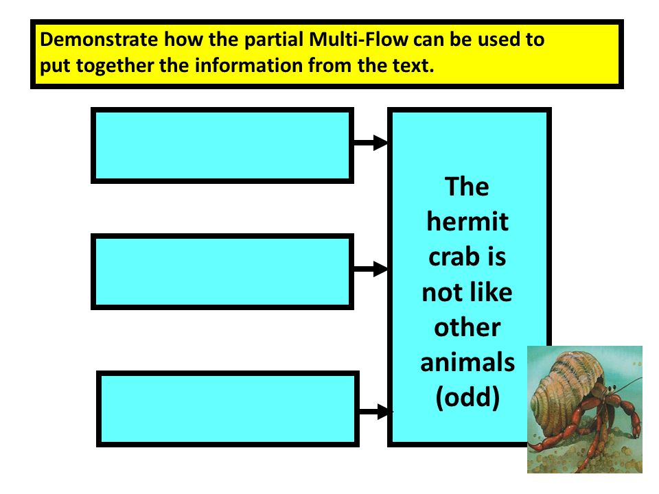The hermit crab is not like other animals (odd) Demonstrate how the partial Multi-Flow can be used to put together the information from the text.