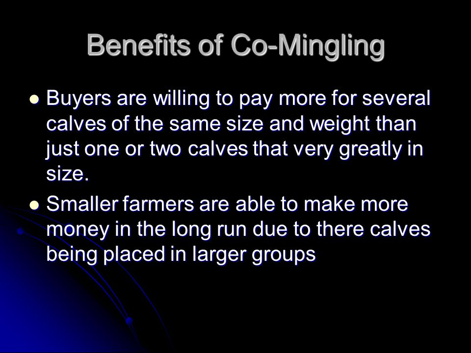 Benefits of Co-Mingling Buyers are willing to pay more for several calves of the same size and weight than just one or two calves that very greatly in size.
