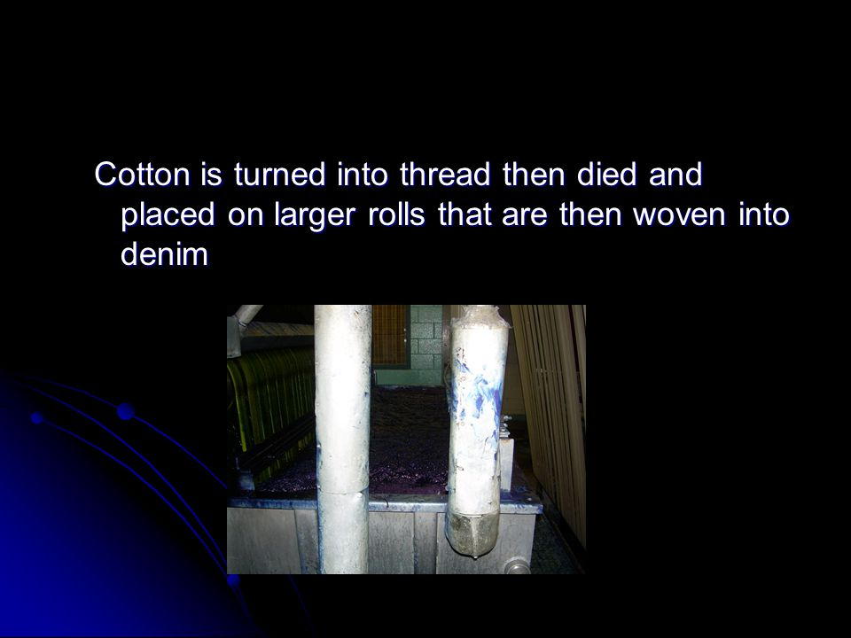 Cotton is turned into thread then died and placed on larger rolls that are then woven into denim