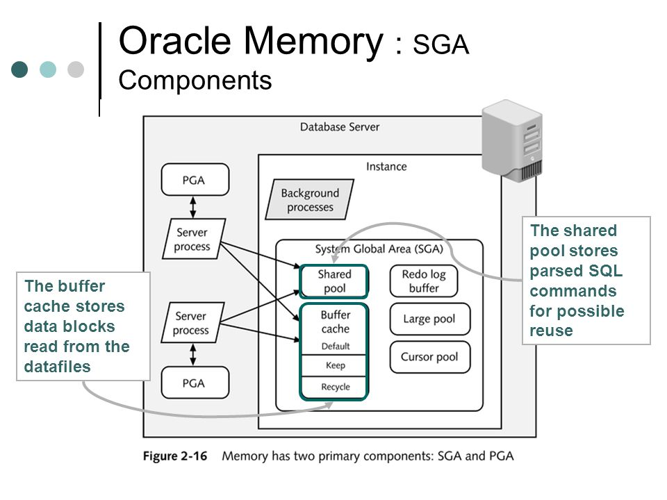 Oracle Memory : SGA Components The shared pool stores parsed SQL commands for possible reuse The buffer cache stores data blocks read from the datafil
