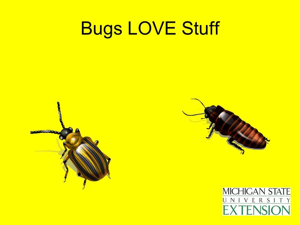 Bugs LOVE Stuff