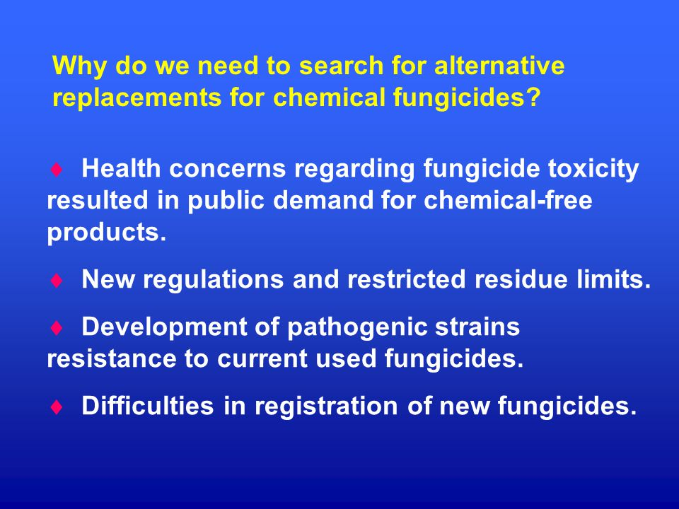 Why do we need to search for alternative replacements for chemical fungicides.