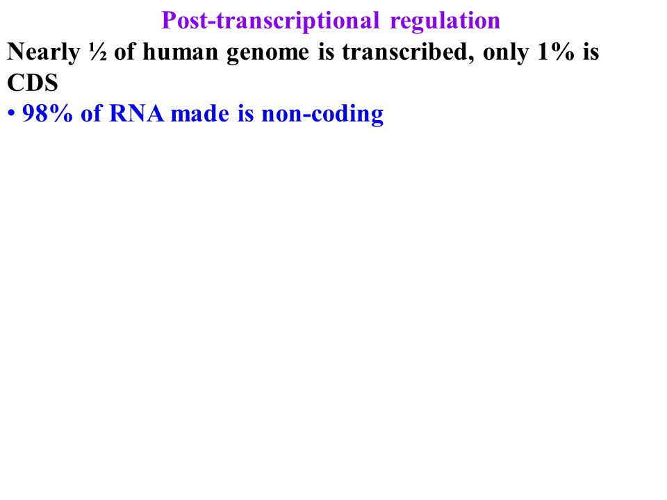 Post-transcriptional regulation Nearly ½ of human genome is transcribed, only 1% is CDS 98% of RNA made is non-coding