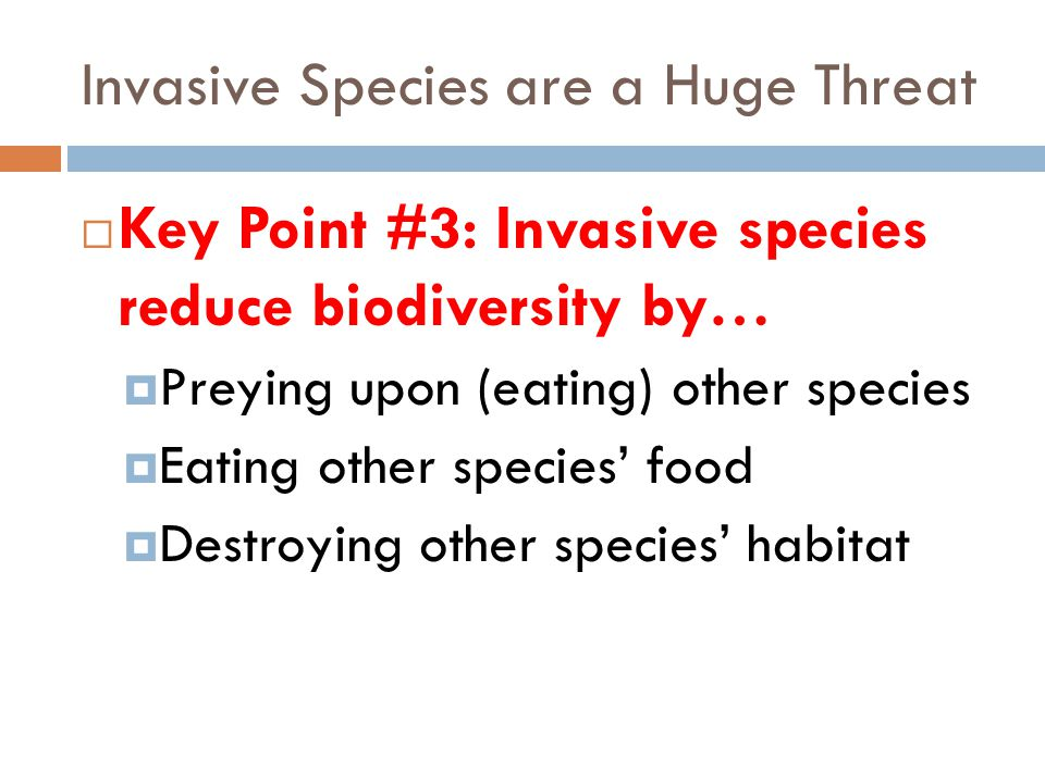 Invasive Species are a Huge Threat  Key Point #3: Invasive species reduce biodiversity by…  Preying upon (eating) other species  Eating other speci