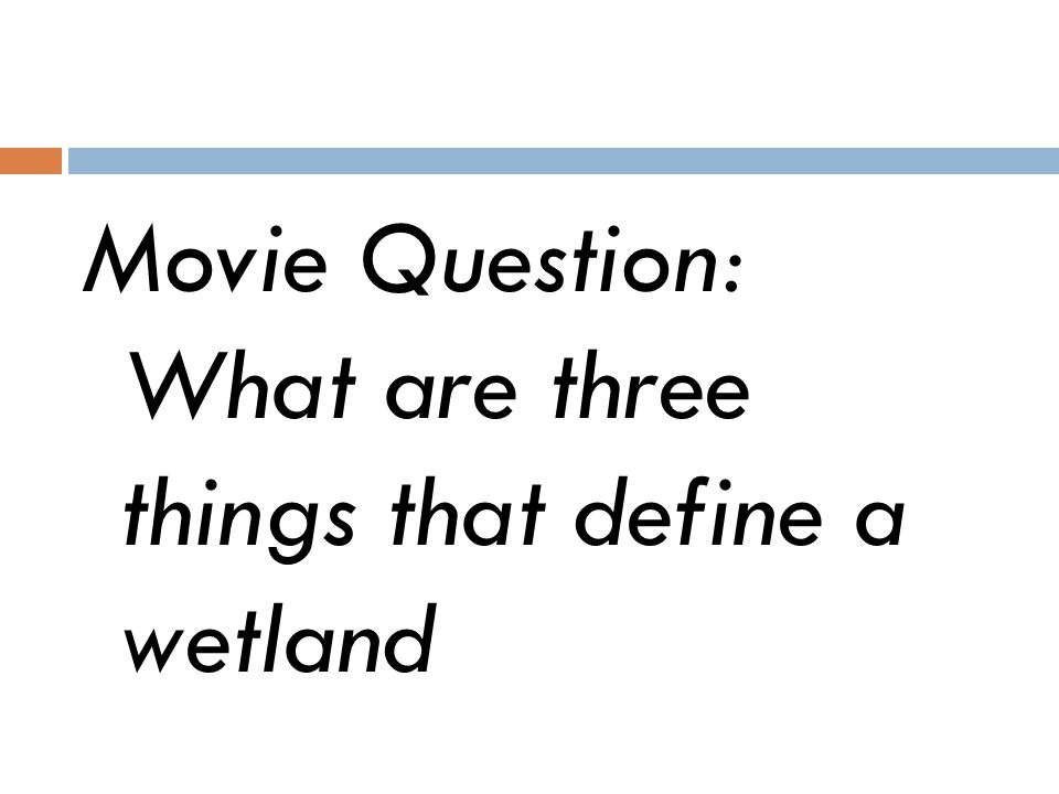 Movie Question: What are three things that define a wetland