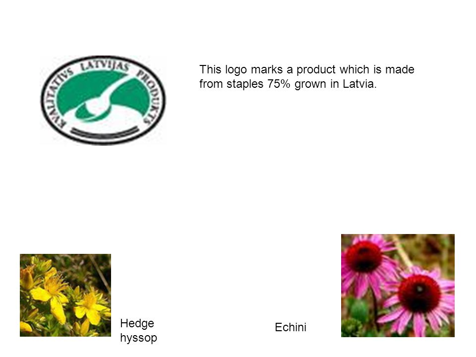 This logo marks a product which is made from staples 75% grown in Latvia. Echini Hedge hyssop