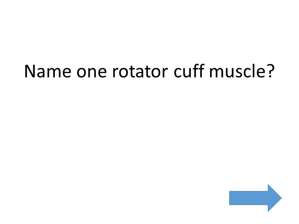 Name one rotator cuff muscle