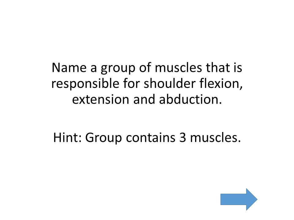 Name a group of muscles that is responsible for shoulder flexion, extension and abduction.