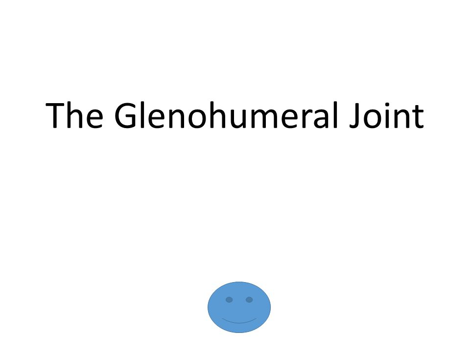 The Glenohumeral Joint