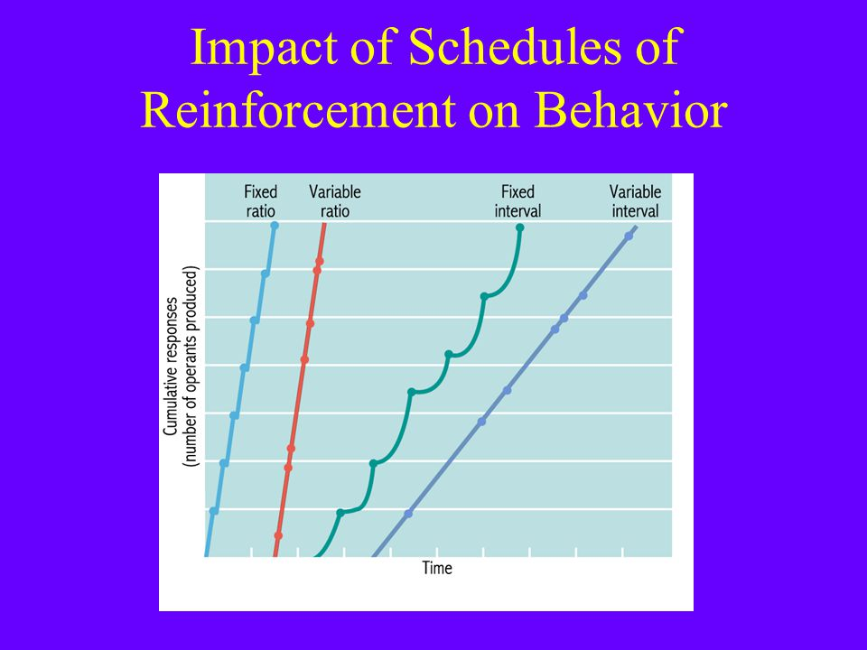 Impact of Schedules of Reinforcement on Behavior