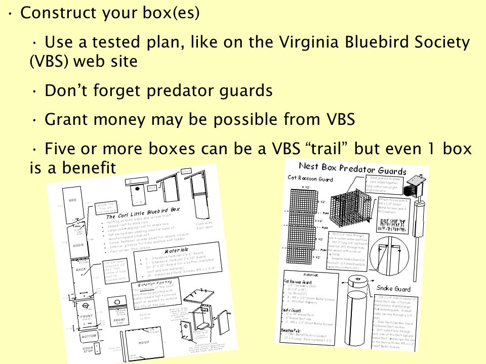 Construct your box(es) Use a tested plan, like on the Virginia Bluebird Society (VBS) web site Don't forget predator guards Grant money may be possible from VBS Five or more boxes can be a VBS trail but even 1 box is a benefit
