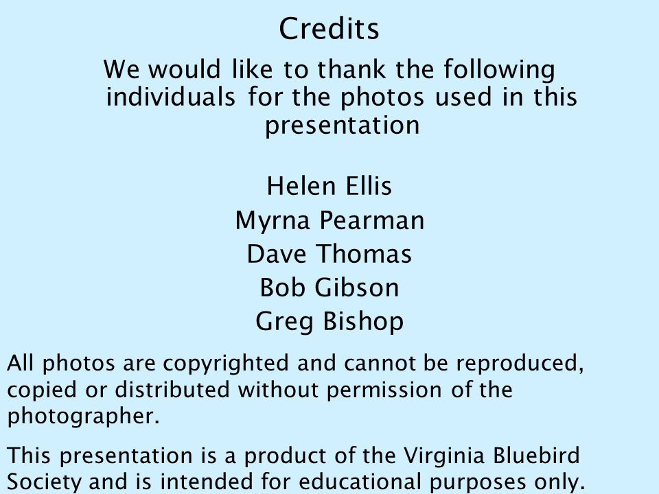 Credits We would like to thank the following individuals for the photos used in this presentation Helen Ellis Myrna Pearman Dave Thomas Bob Gibson Gre