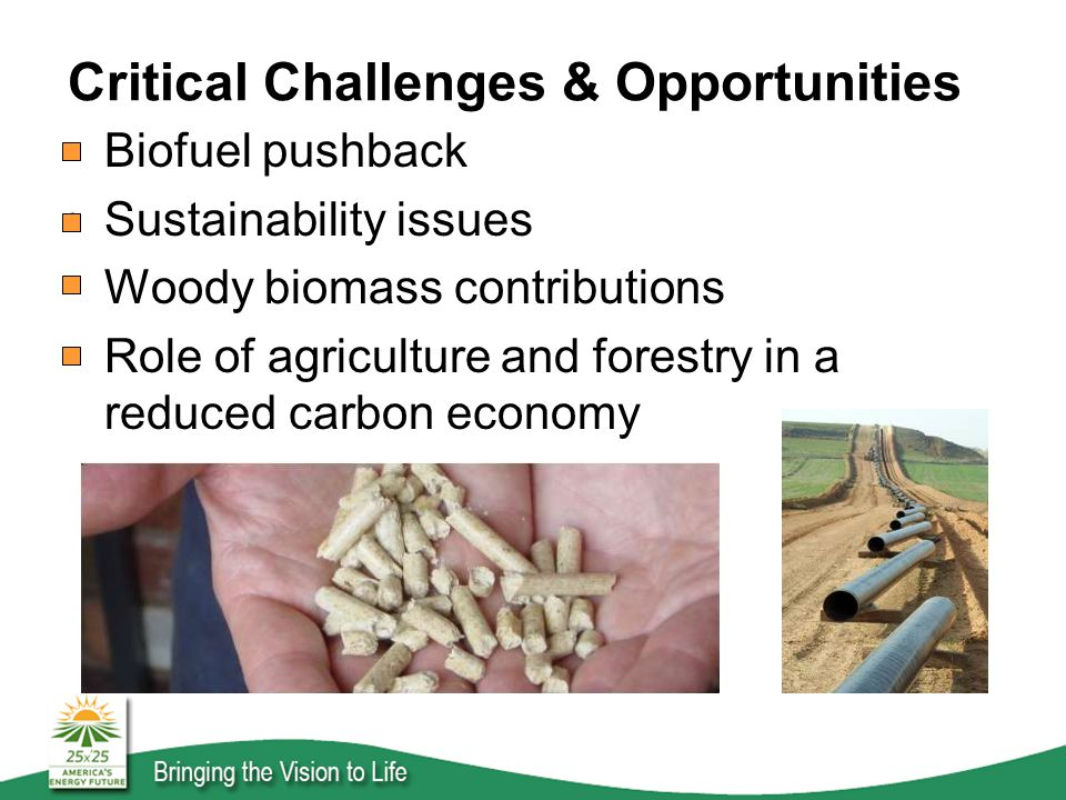 Critical Challenges & Opportunities Biofuel pushback Sustainability issues Woody biomass contributions Role of agriculture and forestry in a reduced carbon economy
