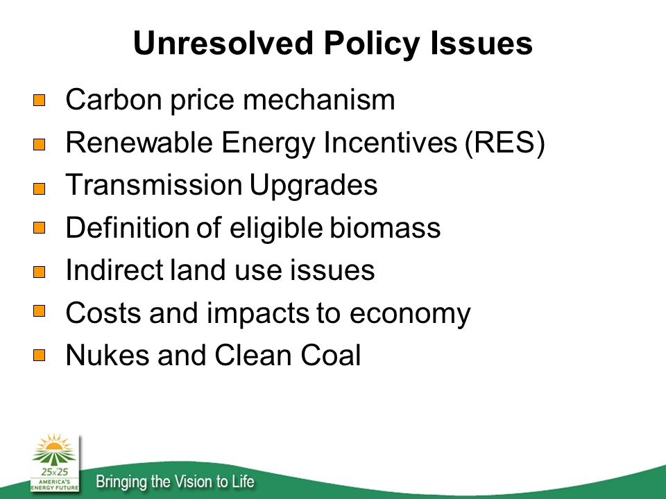 Unresolved Policy Issues Carbon price mechanism Renewable Energy Incentives (RES) Transmission Upgrades Definition of eligible biomass Indirect land use issues Costs and impacts to economy Nukes and Clean Coal