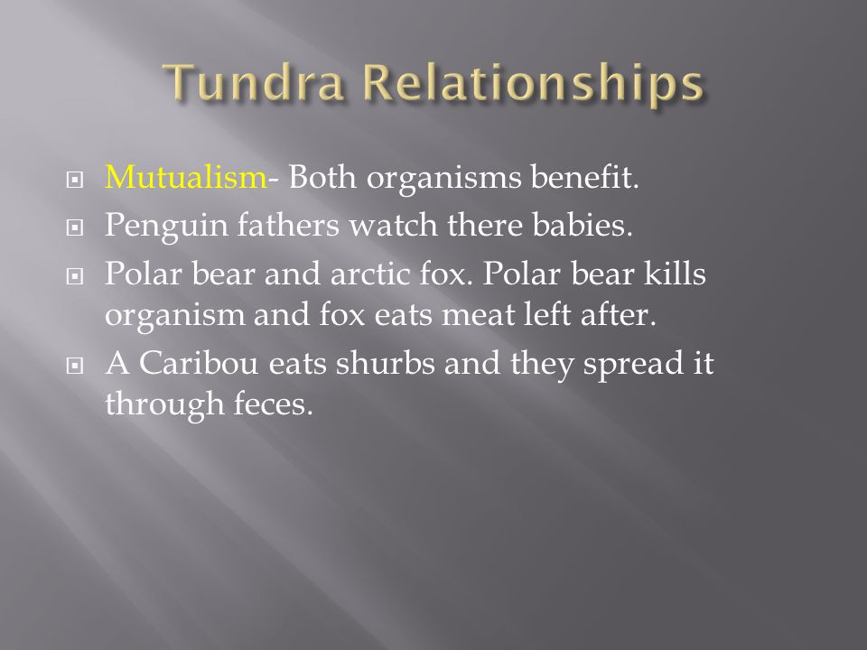  Mutualism- Both organisms benefit.  Penguin fathers watch there babies.