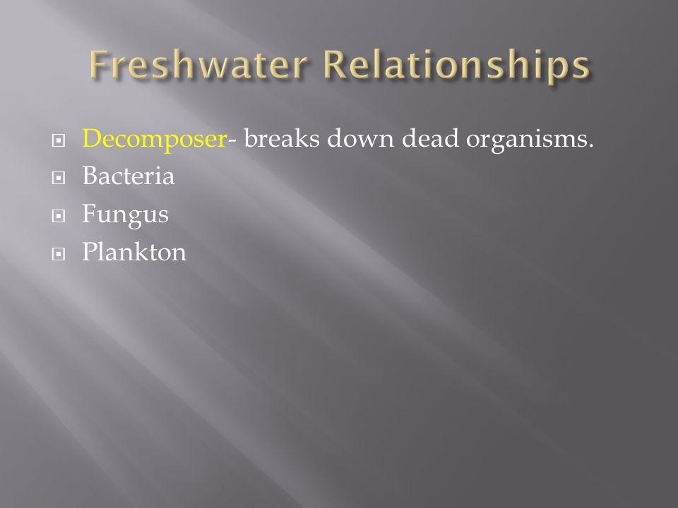  Decomposer- breaks down dead organisms.  Bacteria  Fungus  Plankton