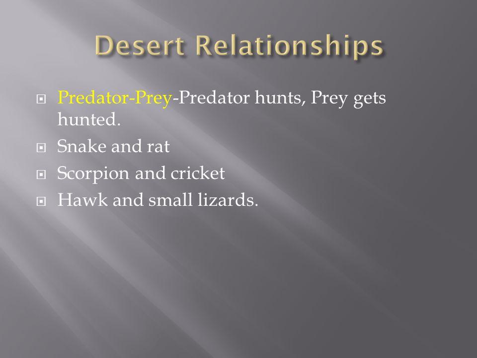  Predator-Prey-Predator hunts, Prey gets hunted.  Snake and rat  Scorpion and cricket  Hawk and small lizards.