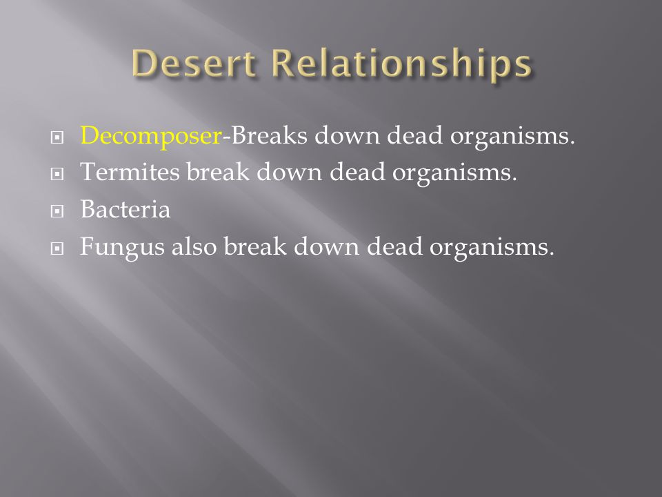  Decomposer-Breaks down dead organisms.  Termites break down dead organisms.  Bacteria  Fungus also break down dead organisms.