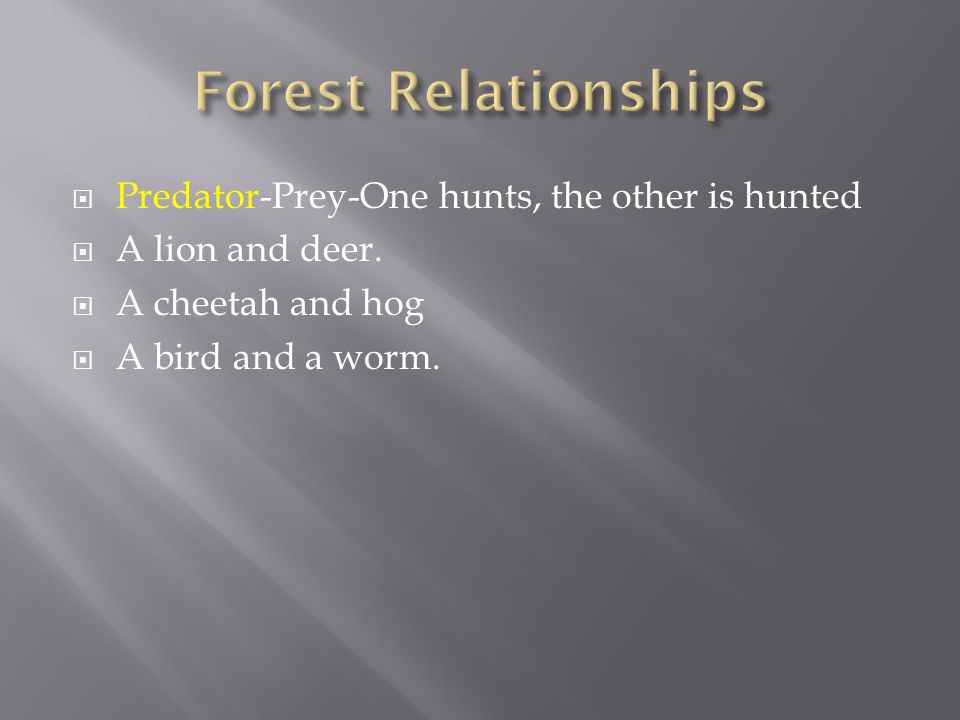  Predator-Prey-One hunts, the other is hunted  A lion and deer.