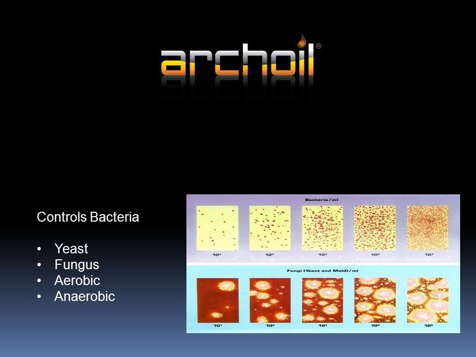 Controls Bacteria Yeast Fungus Aerobic Anaerobic