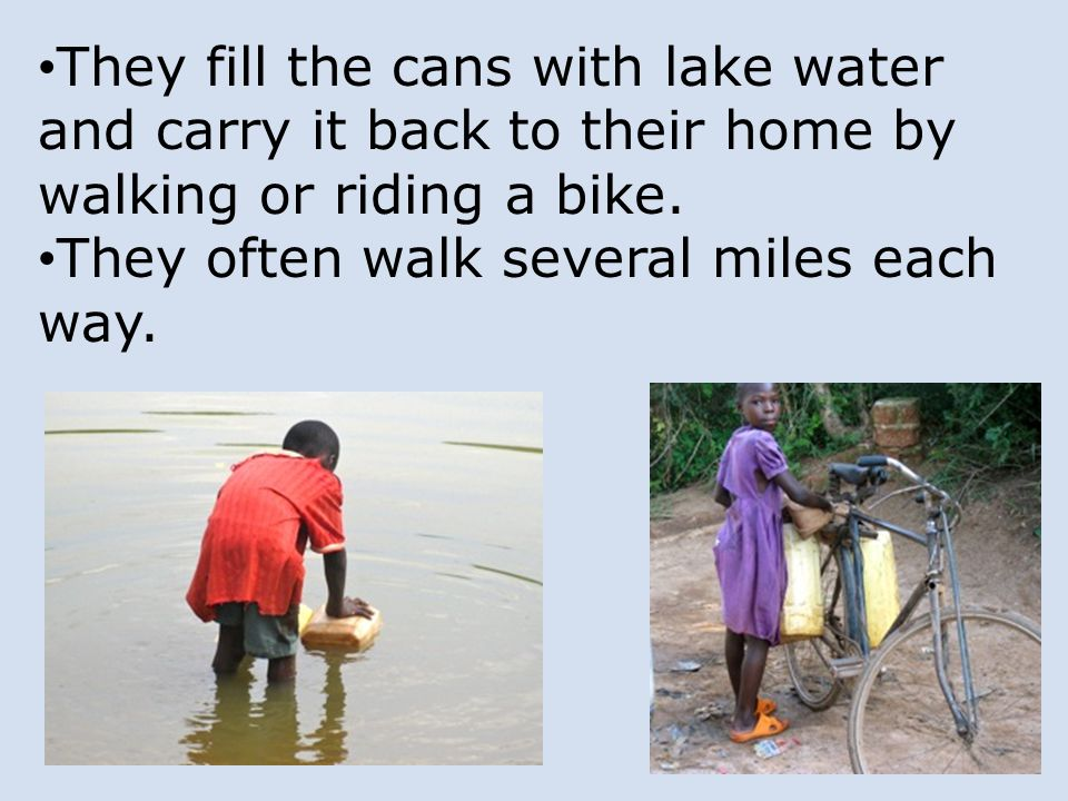 They fill the cans with lake water and carry it back to their home by walking or riding a bike.