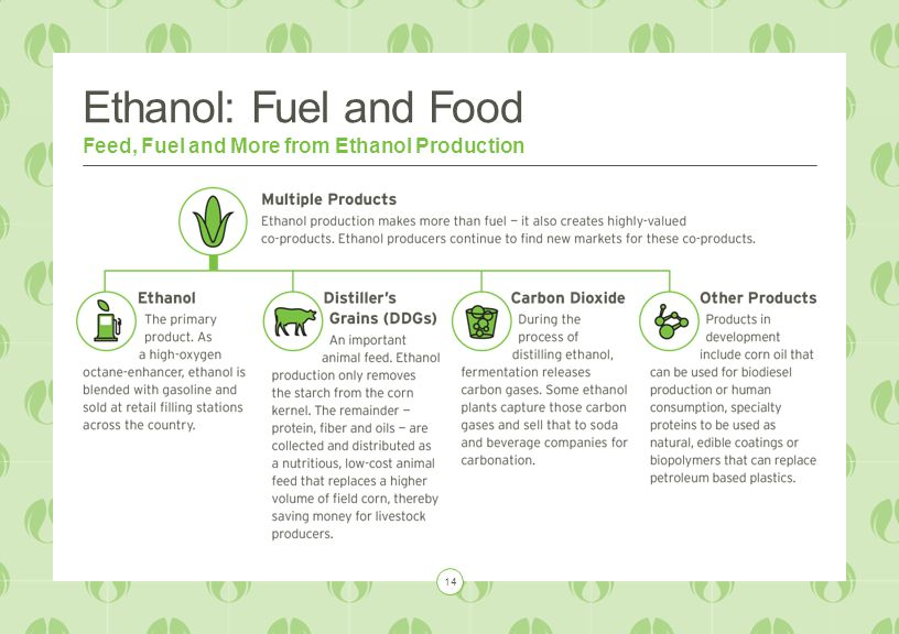 Ethanol: Fuel and Food Feed, Fuel and More from Ethanol Production 14