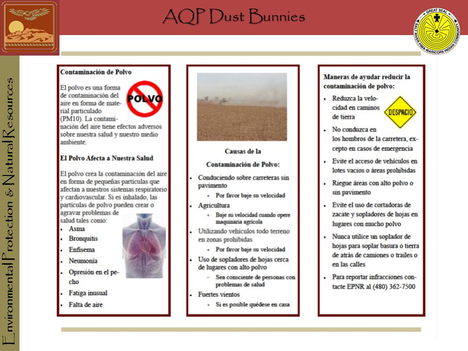 AQP Dust Bunnies Environmental Protection & Natural Resources