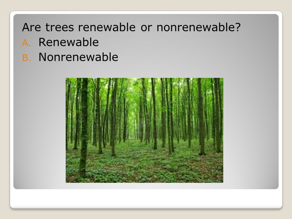 Are trees renewable or nonrenewable? A. Renewable B. Nonrenewable