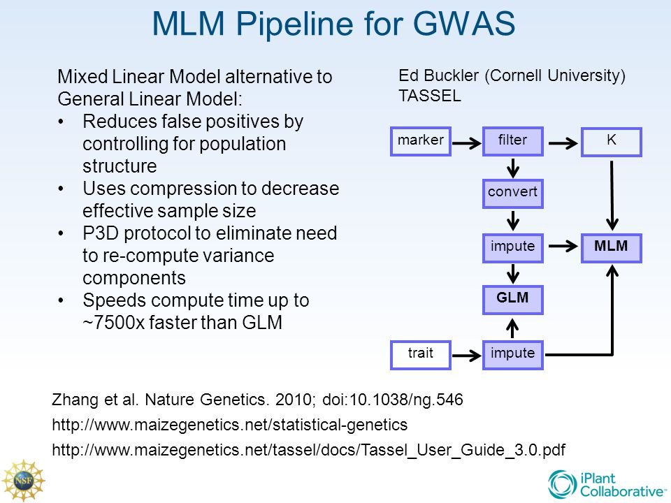 MLM Pipeline for GWAS marker trait filter convert impute K GLM MLM Mixed Linear Model alternative to General Linear Model: Reduces false positives by