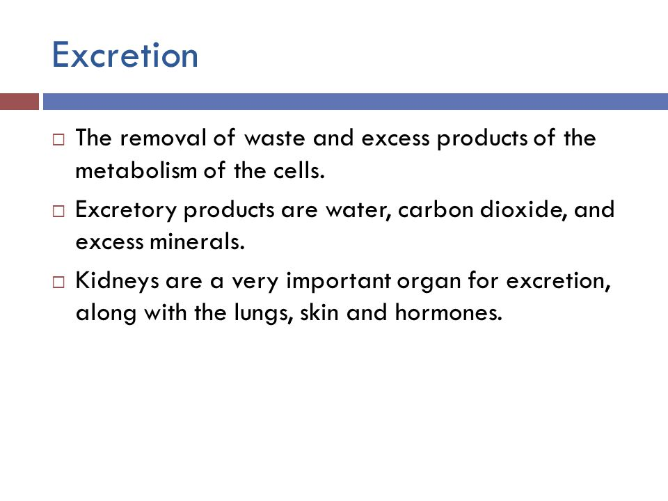 Excretion  The removal of waste and excess products of the metabolism of the cells.