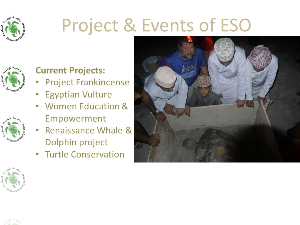 Project & Events of ESO Current Projects: Project Frankincense Egyptian Vulture Women Education & Empowerment Renaissance Whale & Dolphin project Turtle Conservation