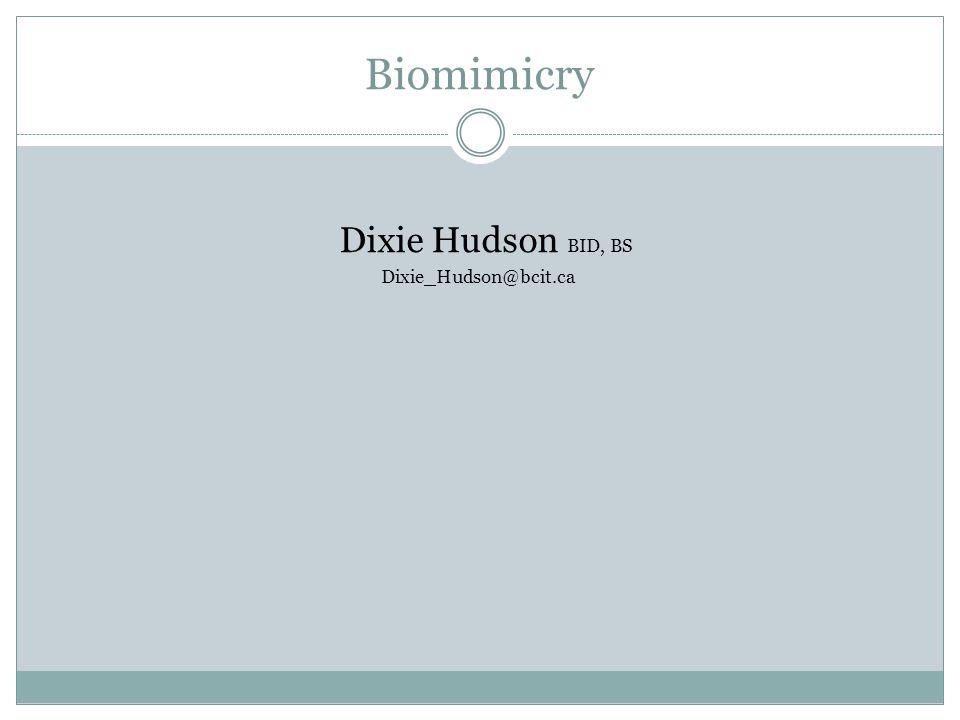 Dixie Hudson BID, BS Dixie_Hudson@bcit.ca