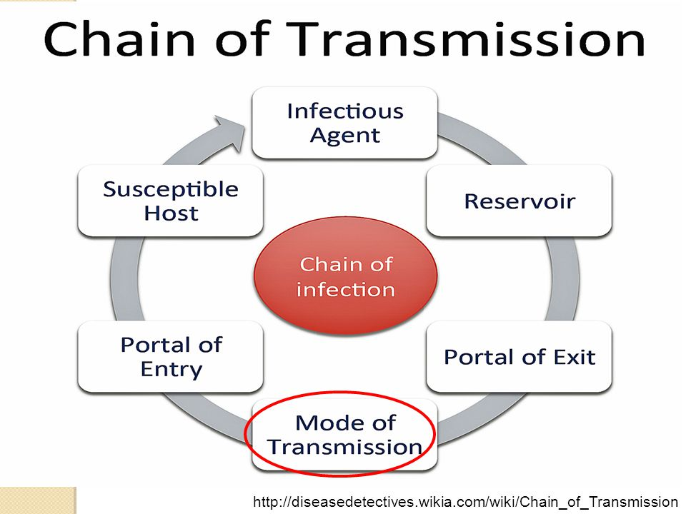 http://diseasedetectives.wikia.com/wiki/Chain_of_Transmission