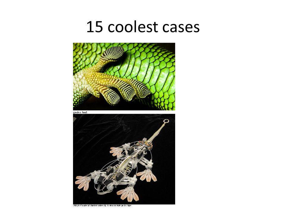 15 coolest cases