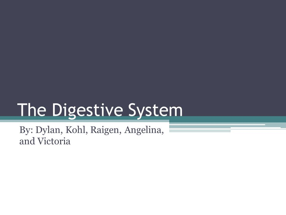 The Digestive System By: Dylan, Kohl, Raigen, Angelina, and Victoria
