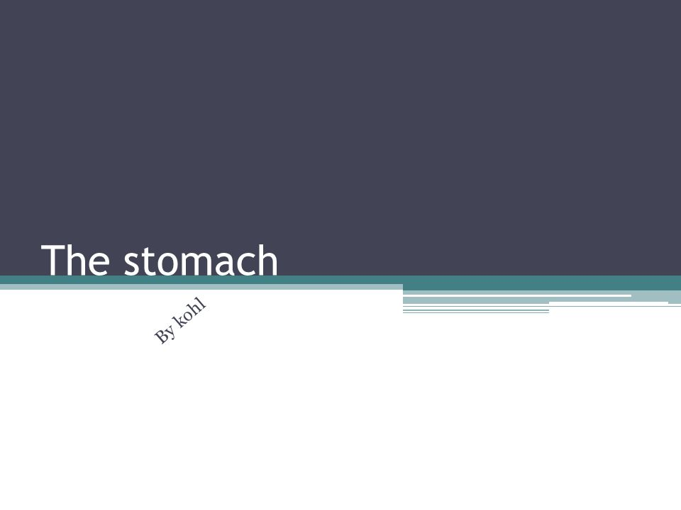 The stomach By kohl